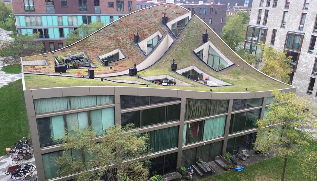 Architektur Amsterdam amsterdam und rotterdam a tour architekturführungen