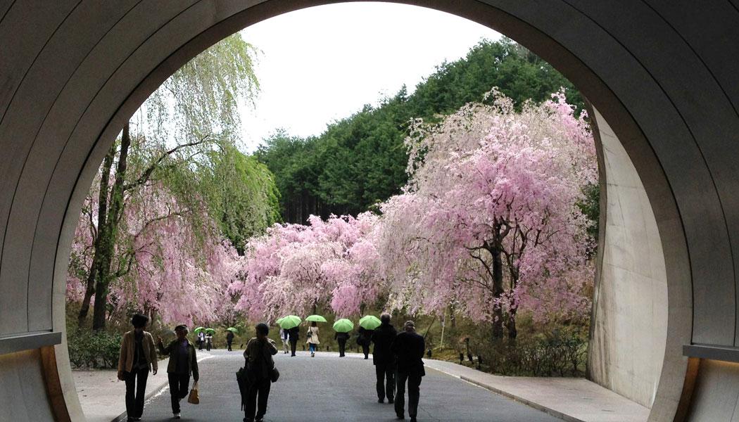 Architekturreise nach Japan